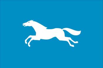 https://static.tvtropes.org/pmwiki/pub/images/flag_of_barnaul.png