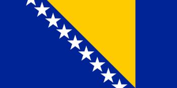 https://static.tvtropes.org/pmwiki/pub/images/flag_of_bosnia_and_herzegovina.png