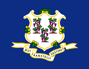 https://static.tvtropes.org/pmwiki/pub/images/flag_of_connecticut_7.png