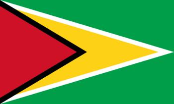 https://static.tvtropes.org/pmwiki/pub/images/flag_of_guyana.png