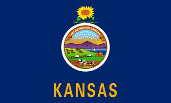 https://static.tvtropes.org/pmwiki/pub/images/flag_of_kansas_7.png