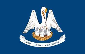 https://static.tvtropes.org/pmwiki/pub/images/flag_of_louisiana_5.png