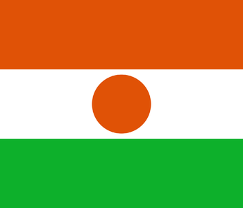https://static.tvtropes.org/pmwiki/pub/images/flag_of_niger.png
