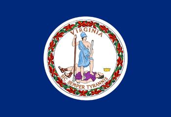 https://static.tvtropes.org/pmwiki/pub/images/flag_of_virginia.png