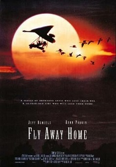 http://static.tvtropes.org/pmwiki/pub/images/fly_away_home_poster_4382.jpg
