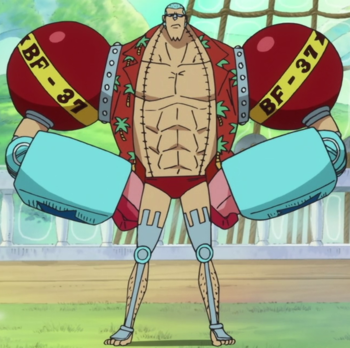 http://static.tvtropes.org/pmwiki/pub/images/franky_anime_post_timeskip_infobox.png