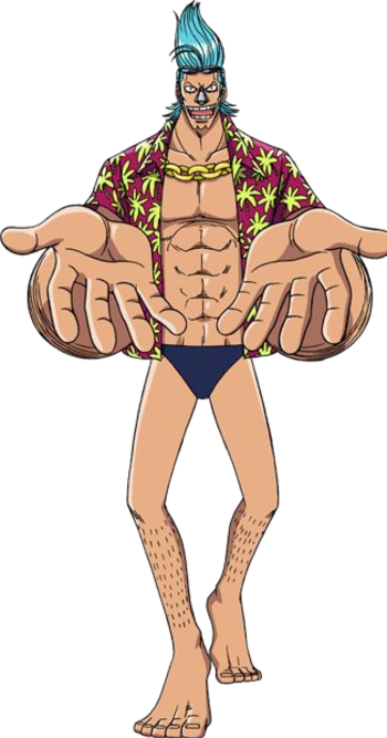 http://static.tvtropes.org/pmwiki/pub/images/franky_anime_pre_timeskip_infobox.png