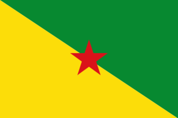 https://static.tvtropes.org/pmwiki/pub/images/french_guianan_flag.png