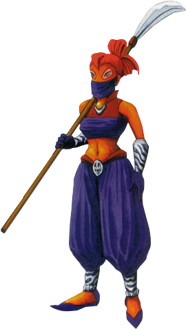 https://static.tvtropes.org/pmwiki/pub/images/gerudo_guard.png