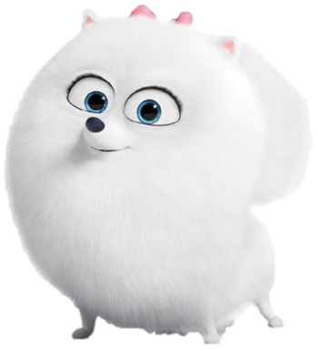 Fluffy White Dog From Secret Life Of Pets