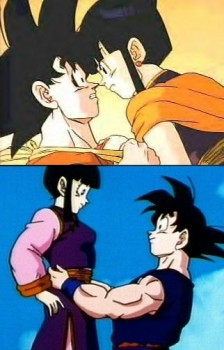 http://static.tvtropes.org/pmwiki/pub/images/goku_chichi12_4282love_809.jpg