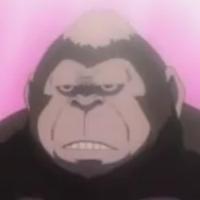 https://static.tvtropes.org/pmwiki/pub/images/gorilla_6408.jpg