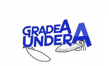 https://static.tvtropes.org/pmwiki/pub/images/grade_a_under_a.jpg