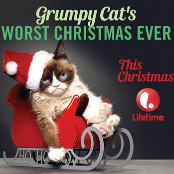 https://static.tvtropes.org/pmwiki/pub/images/grumpy_cat_christmas_a_s_6077.jpg