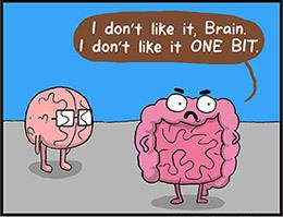 http://static.tvtropes.org/pmwiki/pub/images/gut_and_brain.jpg