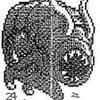 https://static.tvtropes.org/pmwiki/pub/images/gyara.png