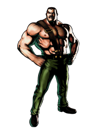 https://static.tvtropes.org/pmwiki/pub/images/haggar.png