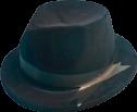 https://static.tvtropes.org/pmwiki/pub/images/hat_blue_bros_flock.png