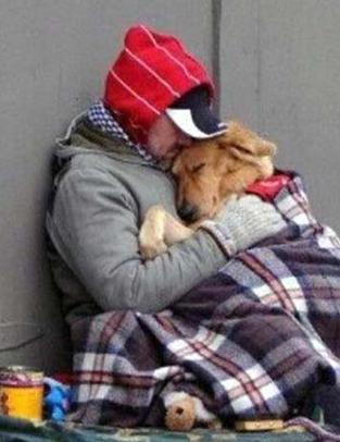 https://static.tvtropes.org/pmwiki/pub/images/homeless_dog_2_4984.png