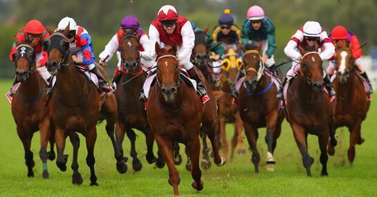 https://static.tvtropes.org/pmwiki/pub/images/horse_racing.jpg