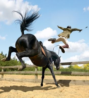 http://static.tvtropes.org/pmwiki/pub/images/horse_throwing_rider_1696.jpg