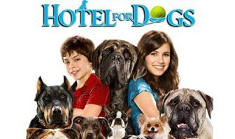 https://static.tvtropes.org/pmwiki/pub/images/hotel_for_dogs_671.jpg
