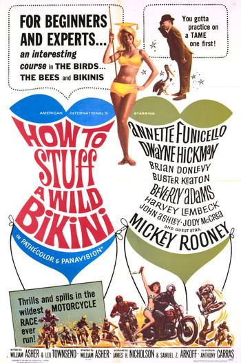 https://static.tvtropes.org/pmwiki/pub/images/how_to_stuff_a_wild_bikini.jpg