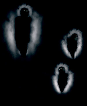 https://static.tvtropes.org/pmwiki/pub/images/humanity_phantom.jpg