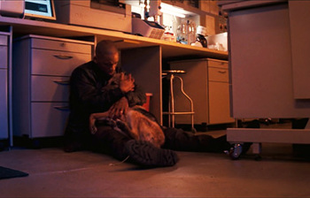http://static.tvtropes.org/pmwiki/pub/images/i_am_legend_2007_movie_will_smith_sam_the_dog_dies.jpg