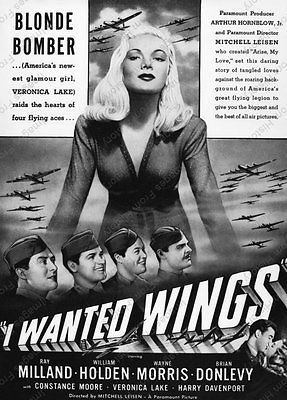https://static.tvtropes.org/pmwiki/pub/images/i_wanted_wings.jpg