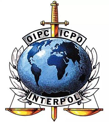 https://static.tvtropes.org/pmwiki/pub/images/interpol_logo.jpg