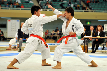 https://static.tvtropes.org/pmwiki/pub/images/japanese_karate_2_6.jpg