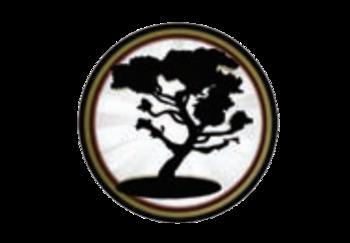 https://static.tvtropes.org/pmwiki/pub/images/jinteki_logo_5.png