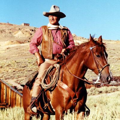 http://static.tvtropes.org/pmwiki/pub/images/john_wayne_cowboy_poster.jpg