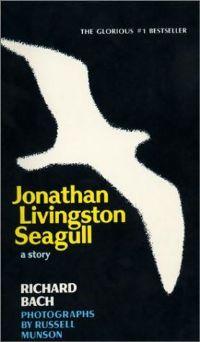 https://static.tvtropes.org/pmwiki/pub/images/johnathan_livingston_seagull_3339.jpg