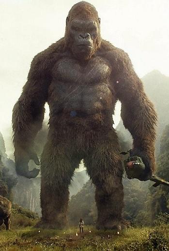 Kind Kong