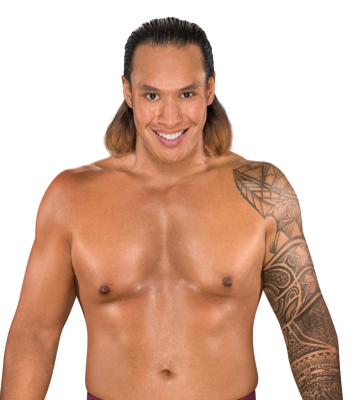 https://static.tvtropes.org/pmwiki/pub/images/kona_reeves_nxt.png