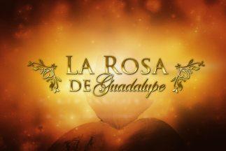 https://static.tvtropes.org/pmwiki/pub/images/la-rosa-de-guadalupe-thumbnail_323x216_2079.jpg