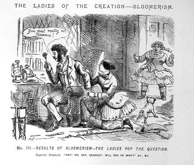 http://static.tvtropes.org/pmwiki/pub/images/ladies-of-creation-bloomerism-3_9759.jpg