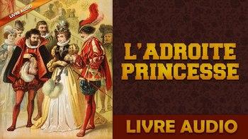 https://static.tvtropes.org/pmwiki/pub/images/ladroite_princesse.jpg