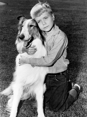 http://static.tvtropes.org/pmwiki/pub/images/lassie-and-timmy_7544.jpg