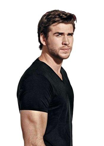 Liam Hemsworth Creator Tv Tropes