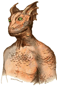 https://static.tvtropes.org/pmwiki/pub/images/lore_race_argonian.png