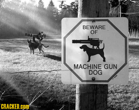 http://static.tvtropes.org/pmwiki/pub/images/machinegundog_6460.jpg