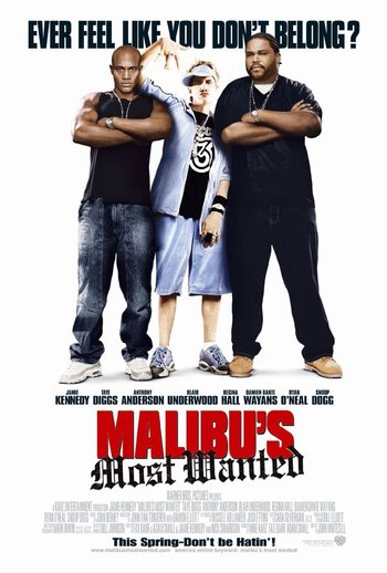 http://static.tvtropes.org/pmwiki/pub/images/malibus_most_wanted_poster.jpg