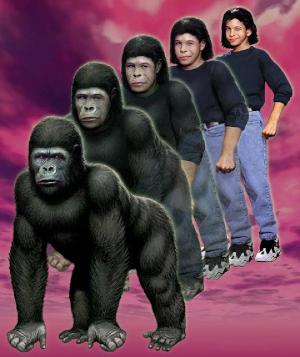 https://static.tvtropes.org/pmwiki/pub/images/marco_gorilla.png
