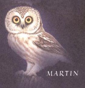 https://static.tvtropes.org/pmwiki/pub/images/martin_82.jpg