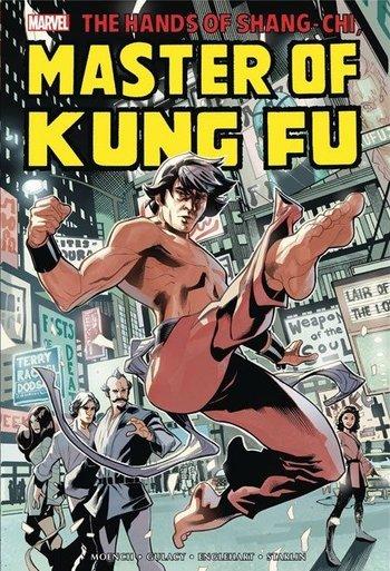 https://static.tvtropes.org/pmwiki/pub/images/master_of_kung_fu.jpg