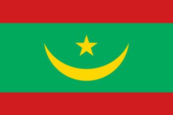 http://static.tvtropes.org/pmwiki/pub/images/mauritanian_flag.png