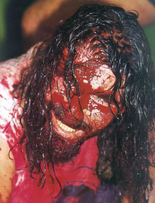 https://static.tvtropes.org/pmwiki/pub/images/mick_foley_blood_3147.jpg